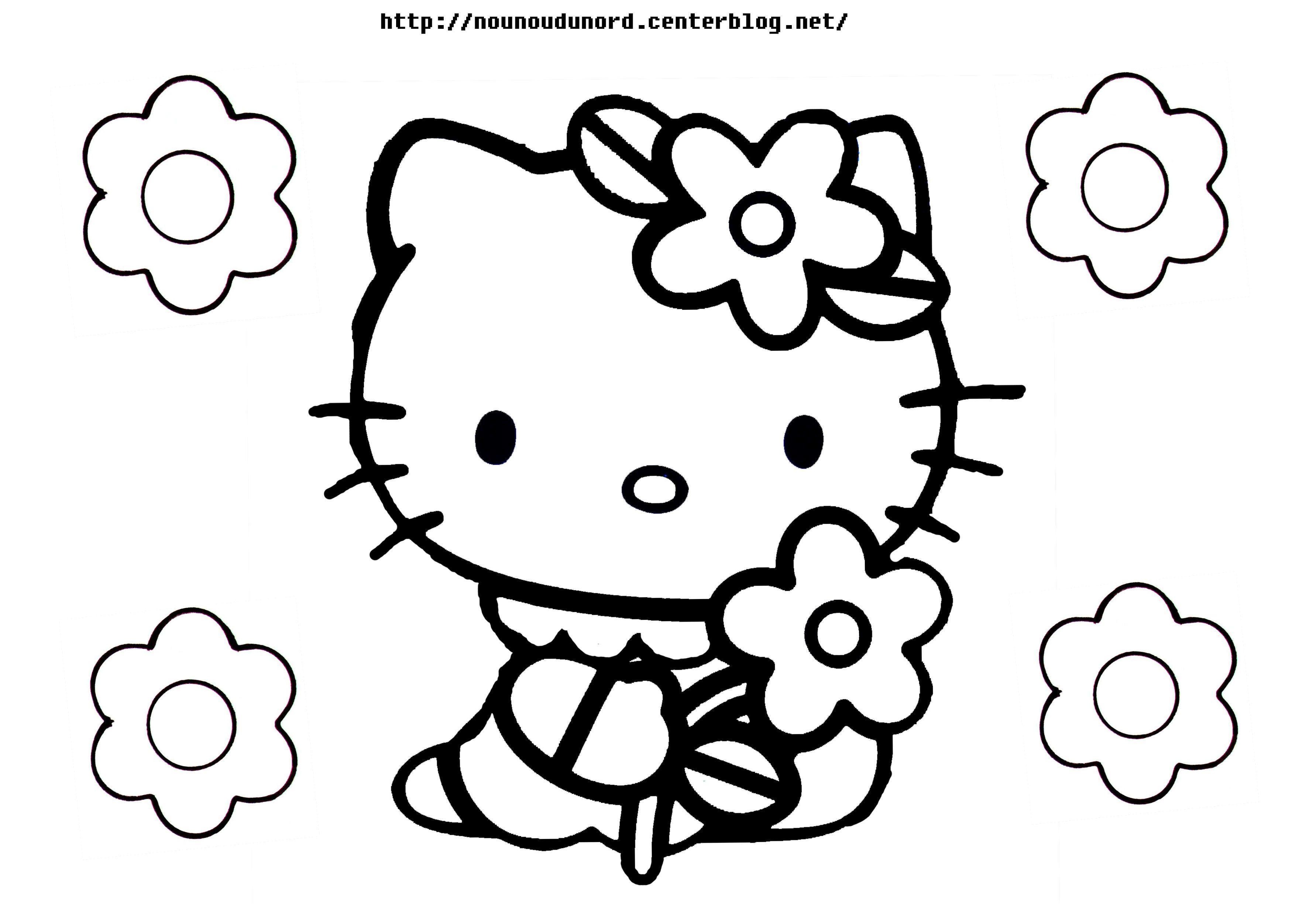 Dessins A Imprimer Raconnat Coloriage Hello Kitty Coloriage A Imprimer Gratuit Coloriage