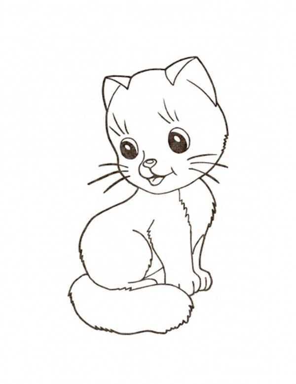 Kitty Cat A Very Spoil To Pet Coloring Page