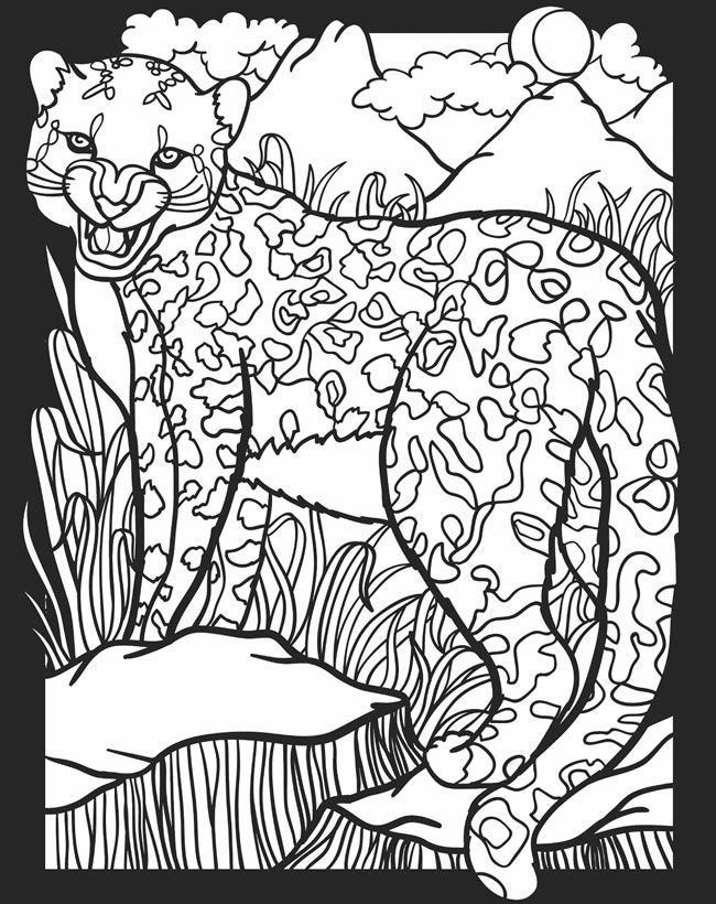 welcome to dover publications animal coloring pages cat