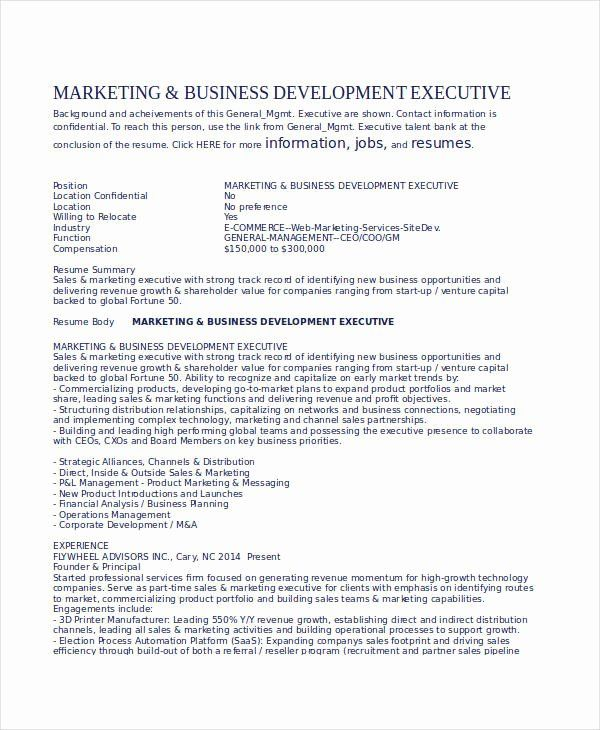 Business Development Executive Resume Elegant 24 Printable Executive Resume Templates Pdf Doc Executive Resume Executive Resume Template Resume