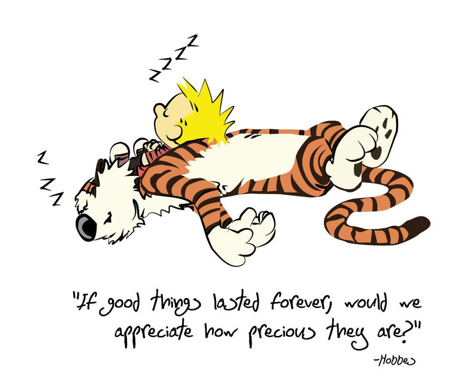 If good things lasted forever , would we appreciate how precious they are? – Hobbes thedailyquotes.com