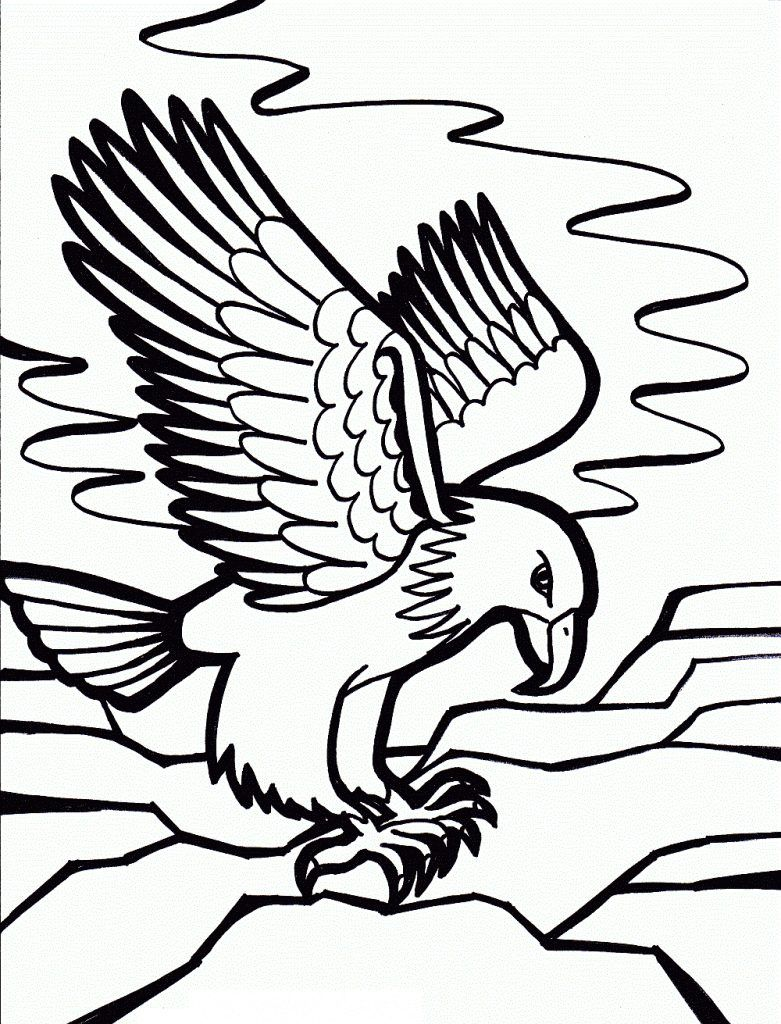 Free Printable Bald Eagle Coloring Pages For Kids With Eagle Clipart Best Clipart Best Bird Coloring Pages Animal Coloring Pages Coloring Pages