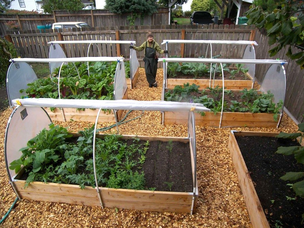 Vegetable Garden Layout Ideas Ireland Good Looking Small Vegetable