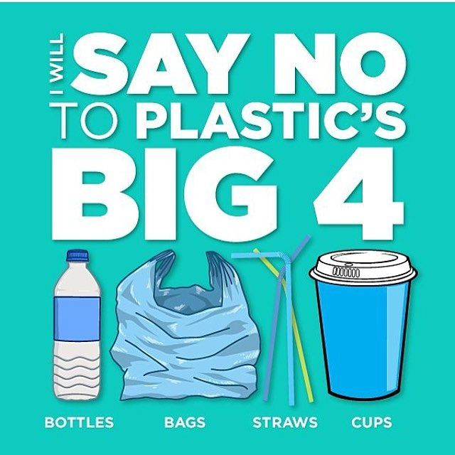 I'm definitely not perfect when it comes to zero waste, but I absolutely refuse to accept these 4 things in my life anymore. So unnecessary and troublesome for the planet and animals! There are simple solutions, reusable water bottle, reusable totes and produce bags (I have some in my profile link), stainless steel, glass, or bamboo straws, and last a reusable coffee cup. Not hard, or expensive. It's all about planning! 🌿💕 Awesome image by @freshcoatcreative