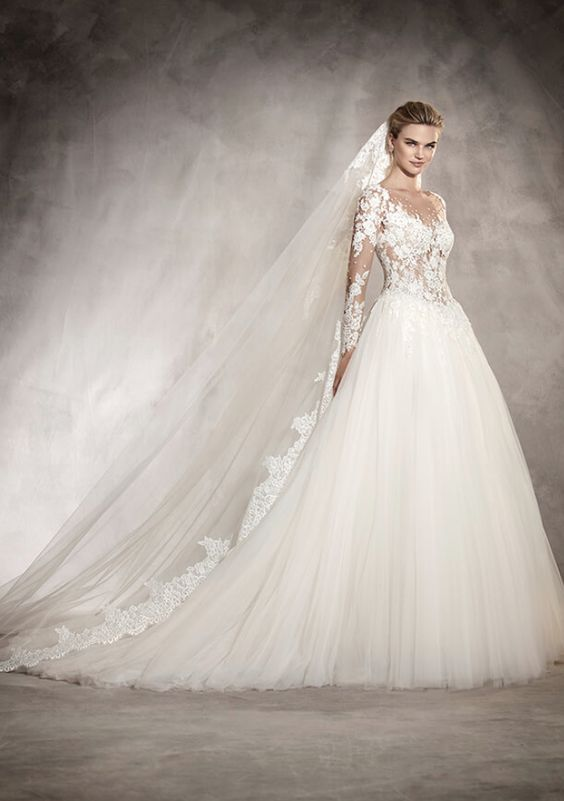 Sheer Long Sleeve Floral Applique Ballgown Wedding Dress Wedding