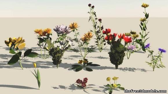 Pin by Luna Li on CS188_Assets | Model, Flowers, Free