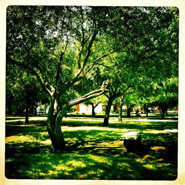 Parque en San Pedro Garza García, Nuevo León.