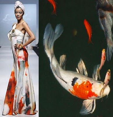 Nature Animal Inspired Luxe Gifts Fabulous Blog Fish Fashion Fashion Inspiration Design Career Fashion