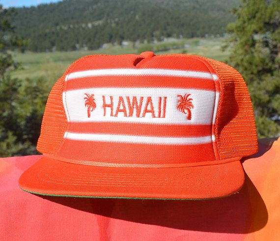 de377fc6b8f vintage 80s mesh trucker hat HAWAII stripe palm tree snapback ...