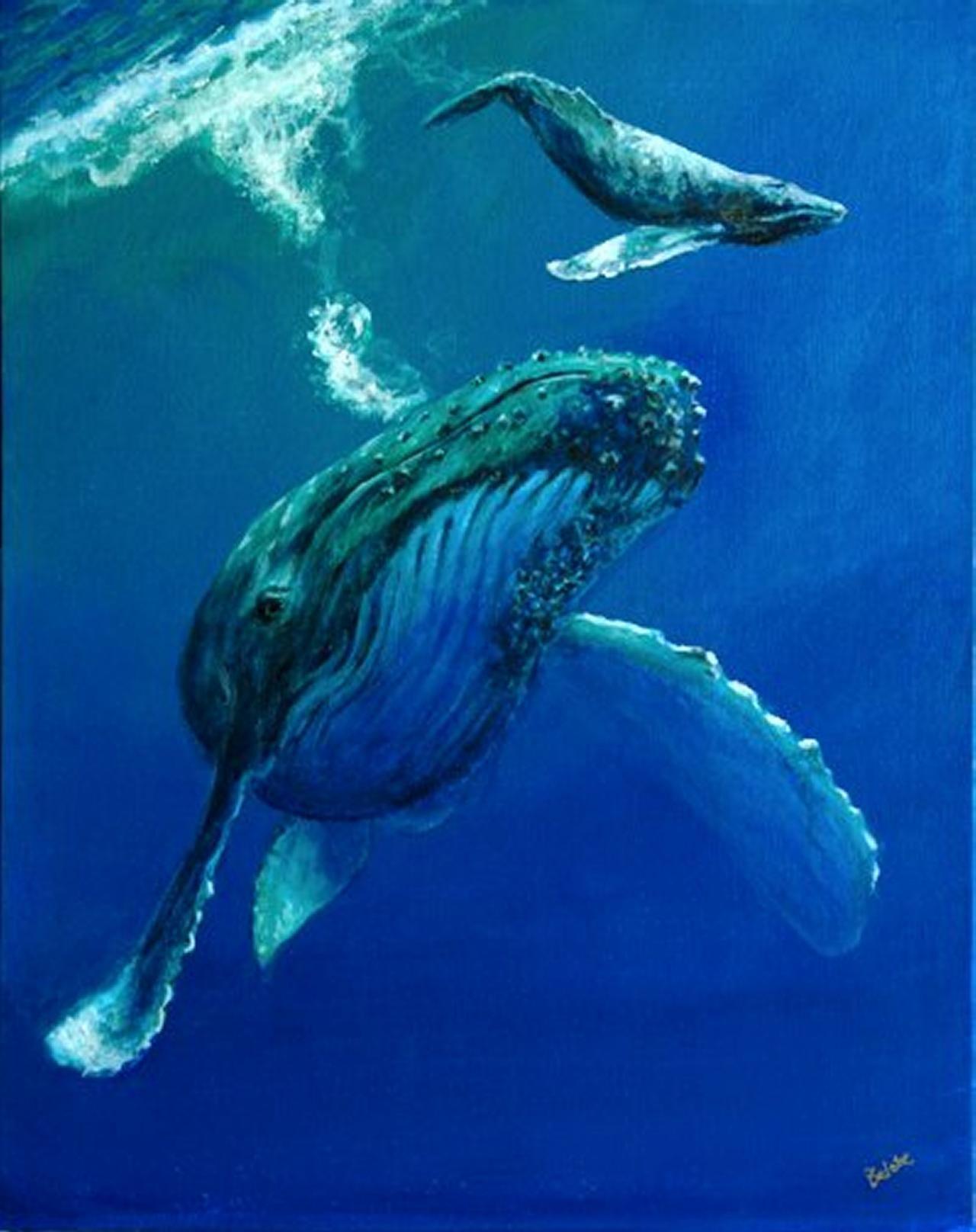 Hawaii Ocean Underwater | ... whale painting, humpback ...