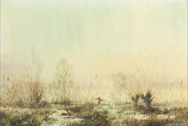 Colin W. Burns (British, born 1944) Pheasants over mashland
