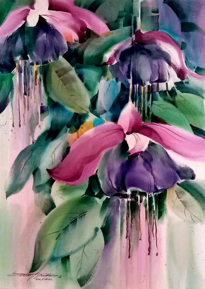 Gorgeous Painting Of Fuschias Artist Unknown Watercolor