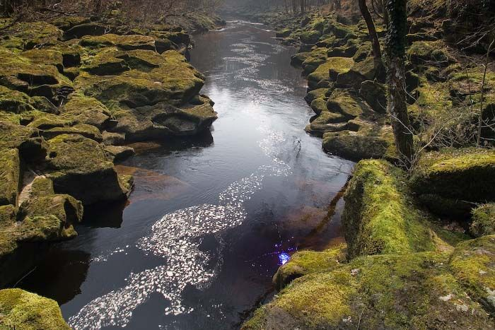 The Bolton Strid | Vacation places, Around the worlds, England