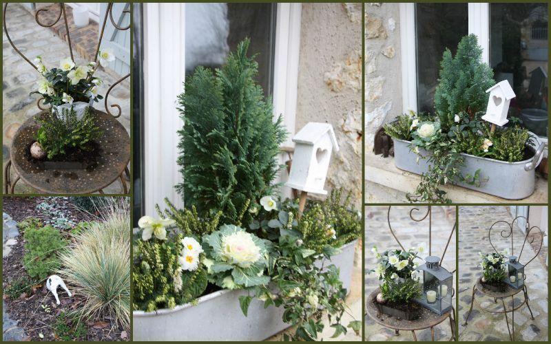 jardini re d 39 hiver mon jardin pinterest jardini res hiver et jardins. Black Bedroom Furniture Sets. Home Design Ideas