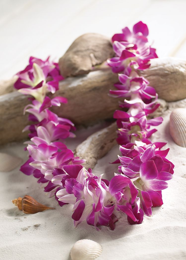 How to host a luau party orchid lei hawaiian and hawaii hawaiian lei am i the only one who wants to put it it the rear izmirmasajfo Image collections