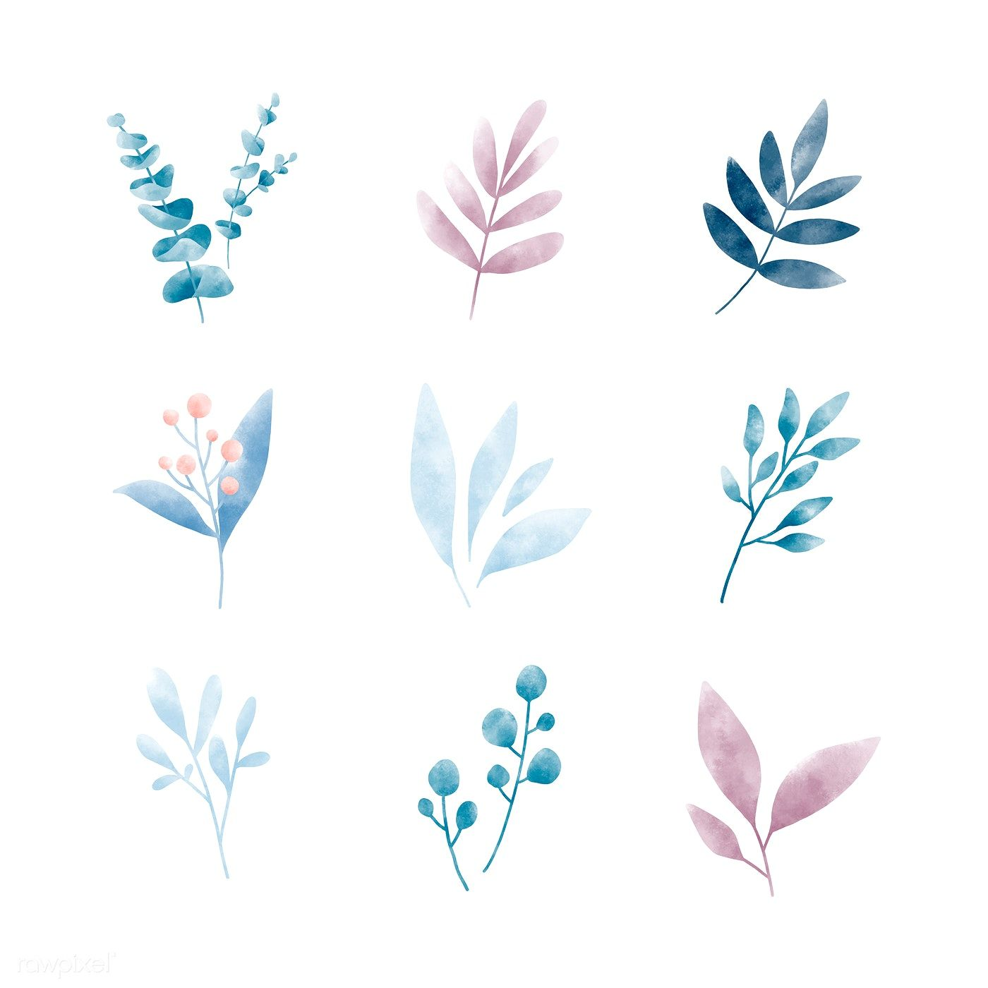 Set Of Watercolor Leaves Vectors Free Image By Rawpixel Com