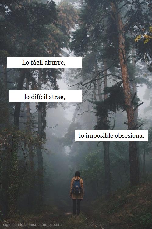 Resultado de imagen para imagenes de bosques tumblr