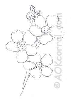 Pin by on pinterest flower patterns forget me not flower pattern ccuart Image collections