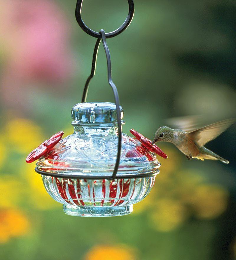Pot De Créme Hummingbird Feeder. I like this too