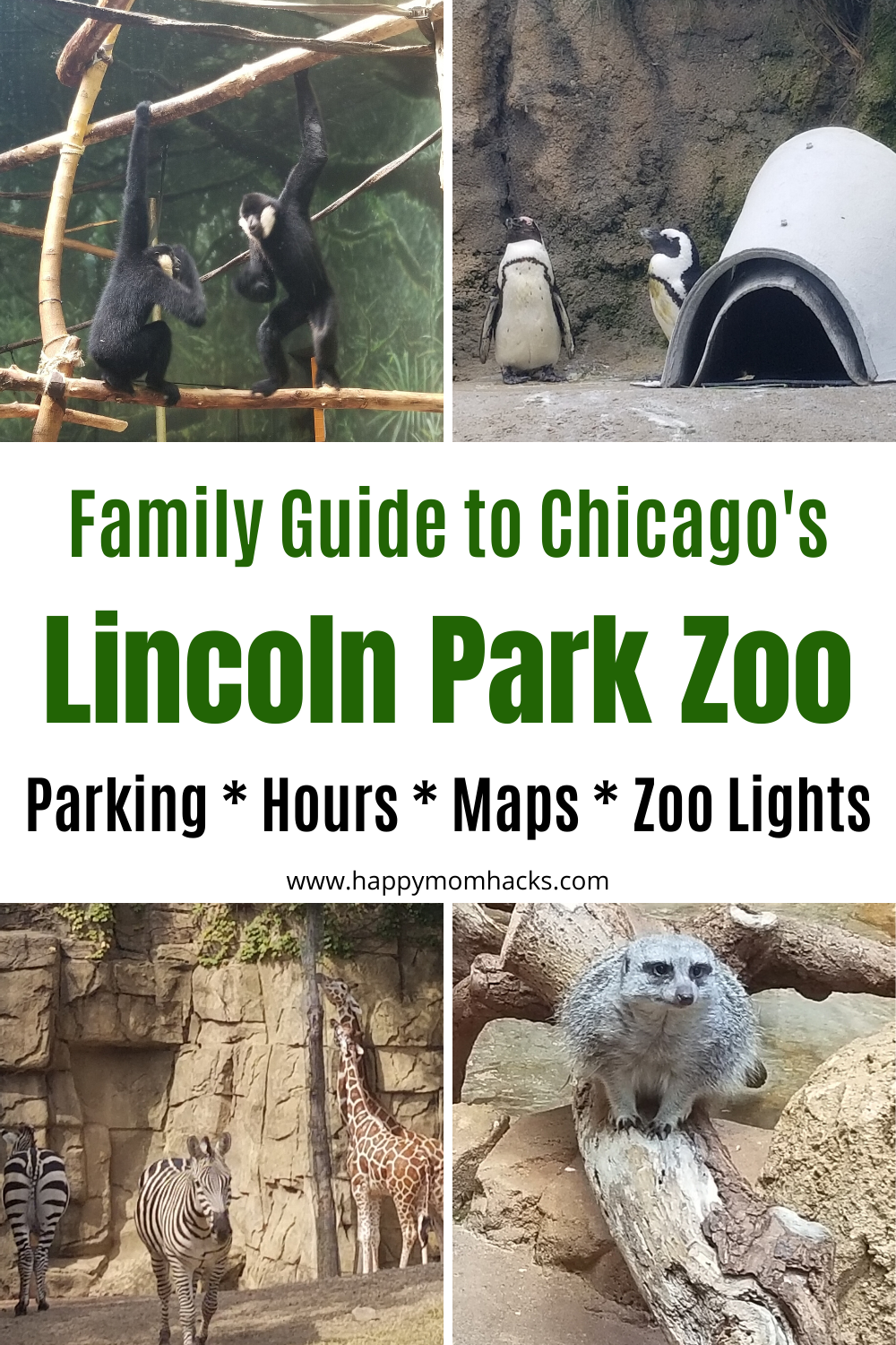 Lincoln Park Zoo Chicago Parking Hours Map Zoo Lights Happy Mom Hacks Lincoln Park Zoo Chicago Lincoln Park Zoo Chicago Parks