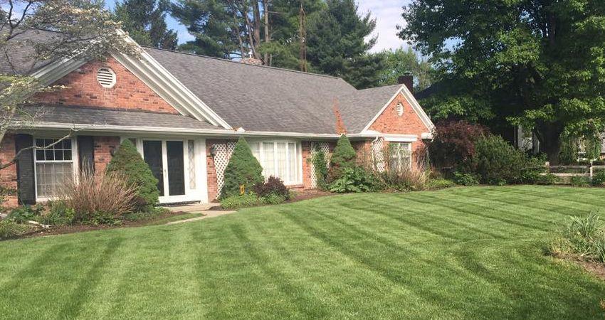 Lawn Care Toledo Ohio Lawn maintenance, Garden care, Lawn