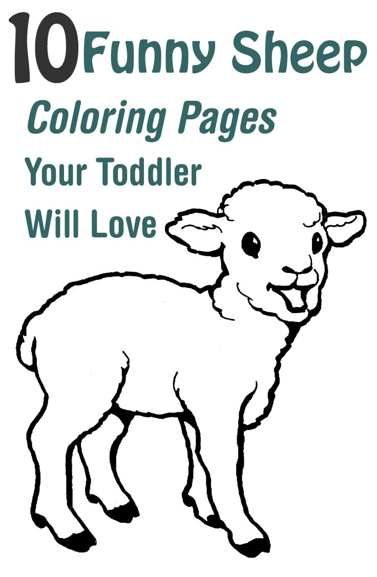 Top 25 Free Printable Sheep Coloring Pages Online | Coloring Pages ...