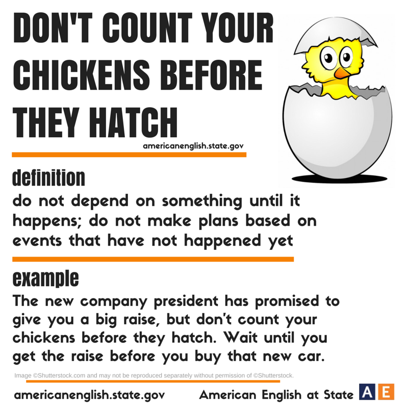 don't count your chicken before they Urban farming: don't count your eggs before they've hatched : the salt when an urban farmer loses some baby chicks she was going to raise in her backyard, she's reminded that nowadays the consumer .