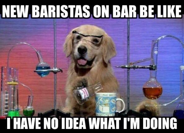 I laugh at them  | The Barista Life☕️ | Funny meme
