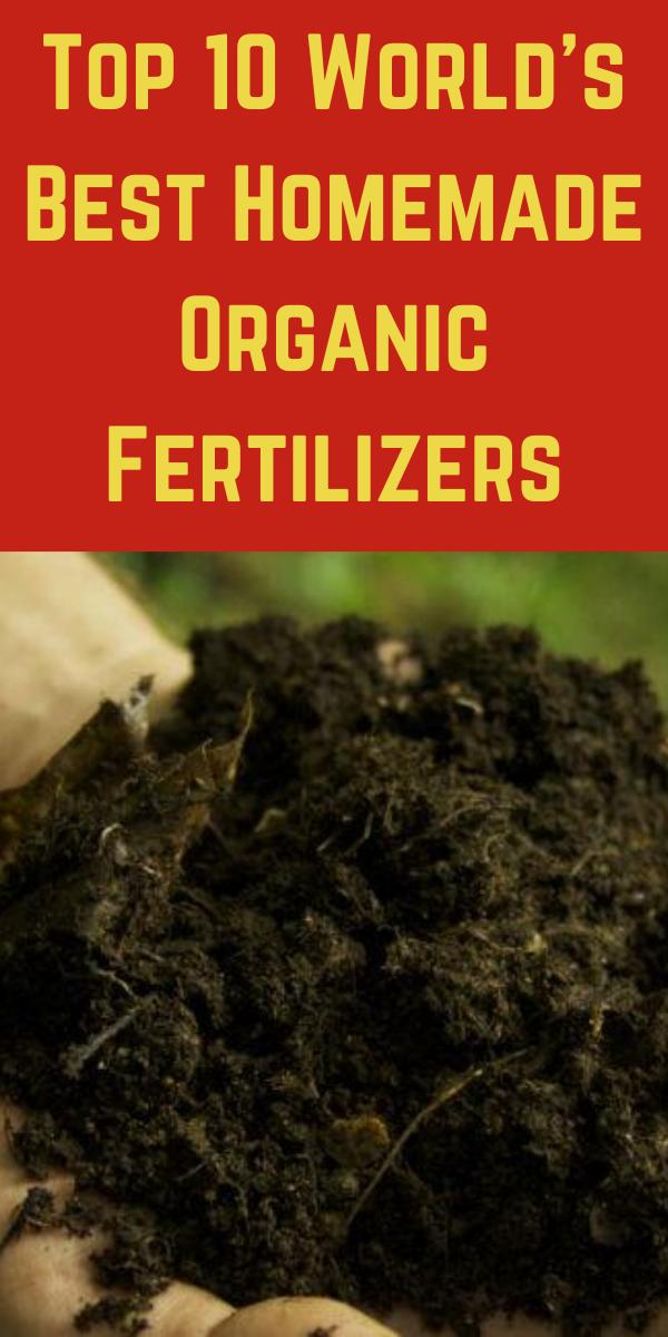 34bbb6a0f4612e00447ed66fc6bed81b - Expert Gardener 10 10 10 Fertilizer