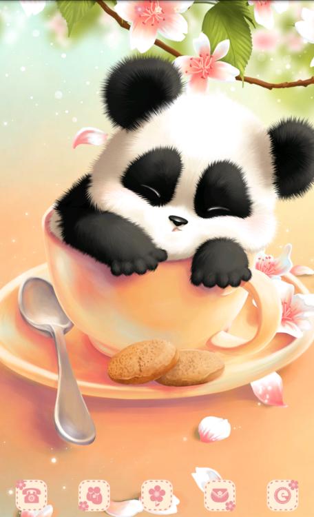 Kawaii panda bear wallpaper google search fantasy - Panda anime wallpaper ...