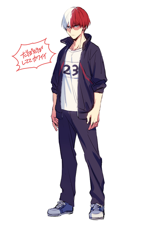 Shouto Todoroki Hero Academia Characters Buko No Hero Academia My Hero