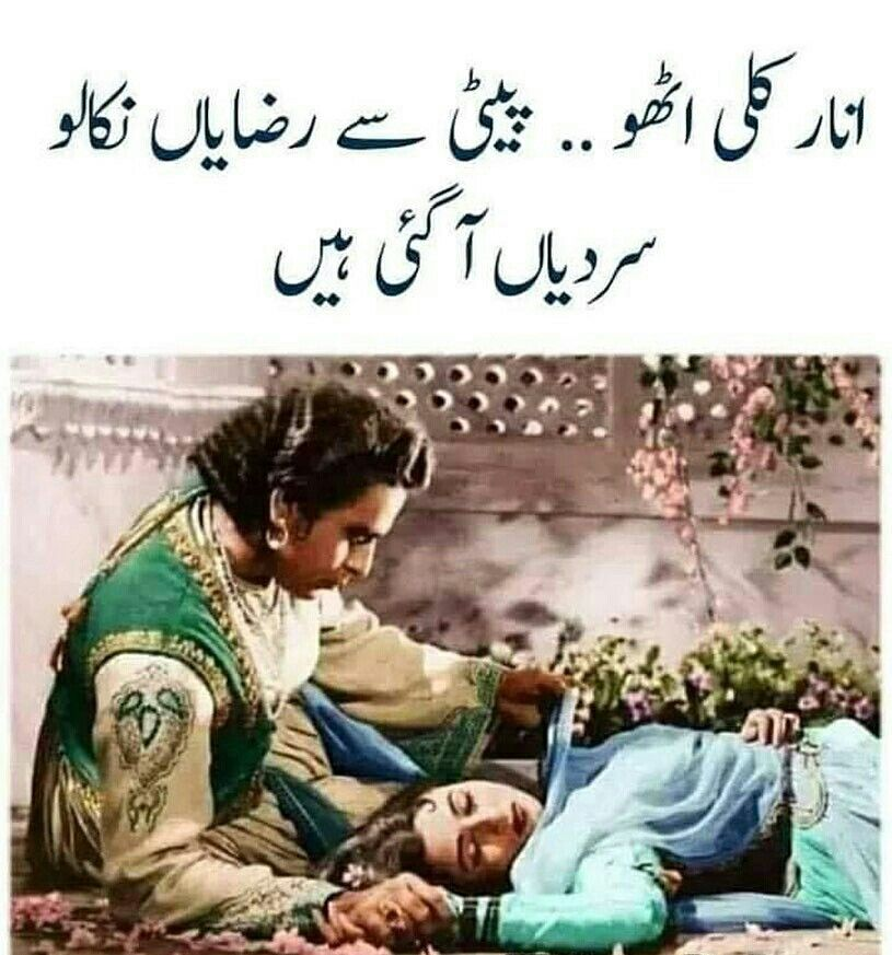 It S Winter Time Now Cute Funny Quotes Urdu Funny Quotes Jokes Images