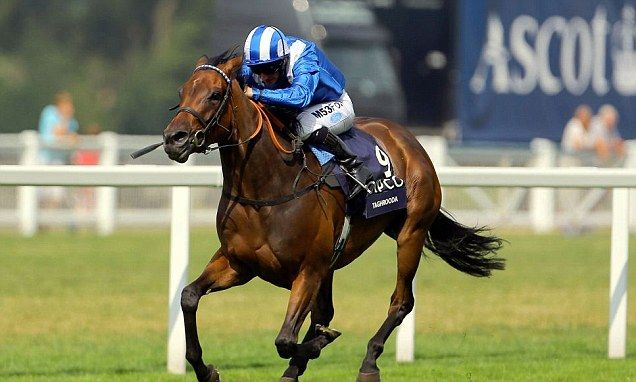 King george stakes betting advice online betting singapore