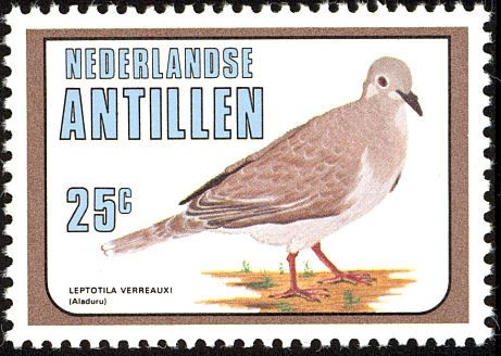 White-tipped Dove stamps - mainly images - gallery format