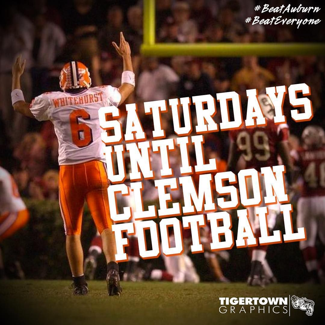 Just 6 weeks left until the Tigers roar! We can't wait for