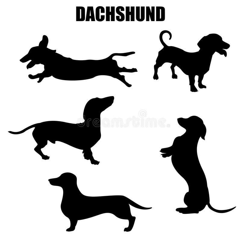 Dachshund Dog Vector Icons Royalty Free Illustration Dog Vector