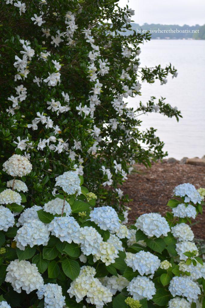 Pin On White Garden