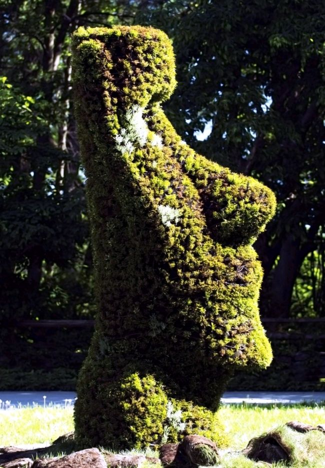 Human face topiary at the Montreal Botanical Gardens