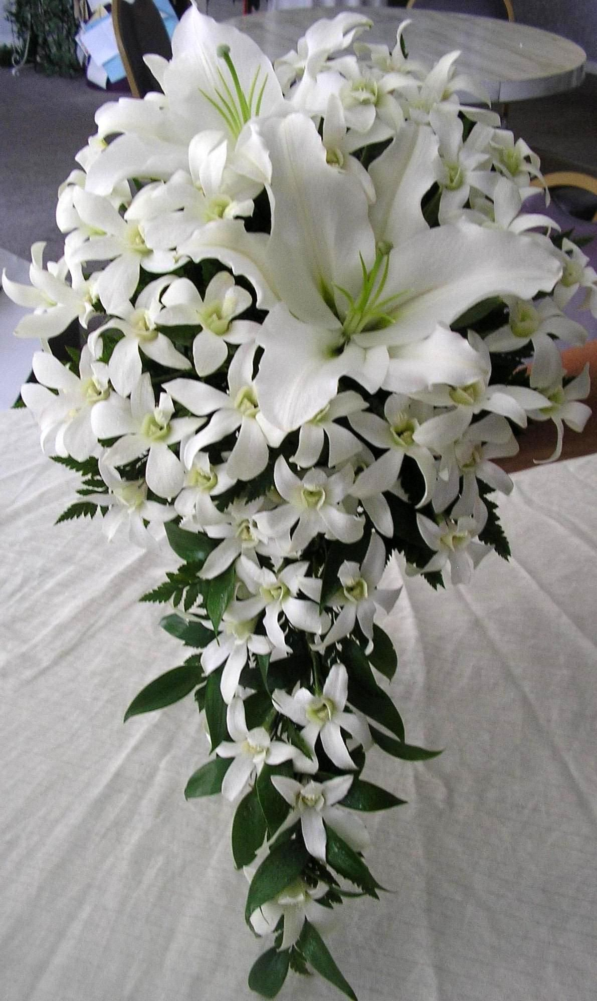 White princess orchids white stargazer lilies aberdeens bouquets white princess orchids white stargazer lilies aberdeens mightylinksfo