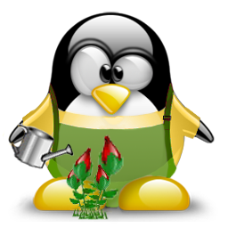 Tux Responsable Des Plantes Penguins Cool Drawings Cartoon People