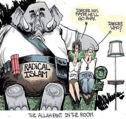 The Allah Fant In The Room Political Cartoons Political