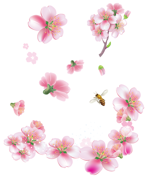 Spring pink trees flowers png clipart dekopaj pinterest pink craft spring pink trees flowers png clipart mightylinksfo Image collections