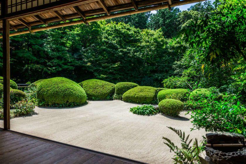 creation jardin 840 561 green pinterest. Black Bedroom Furniture Sets. Home Design Ideas