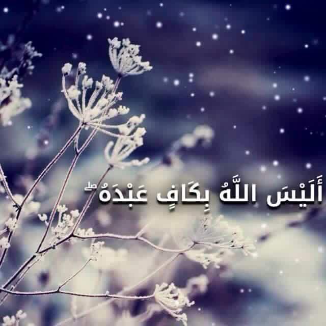 أ ل ي س الل ه ب ك اف ع ب د ه و ي خ و ف ون ك ب ال ذ ين