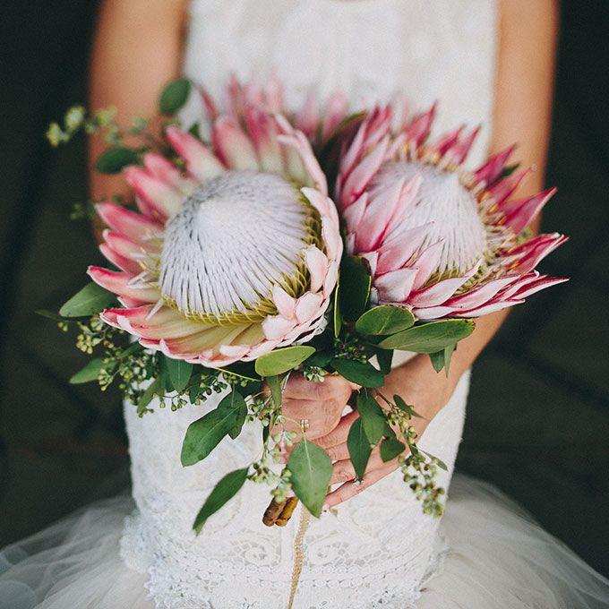 Protea Wedding Flowers: Wedding Flowers & Bouquets