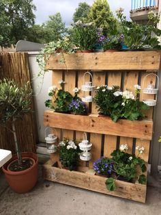 Cloison Exterieure En Palette En Bois Decoree Avec Des Plantes Jardiniere Palette Mur Vegetal Palette Meuble Jardin Palette