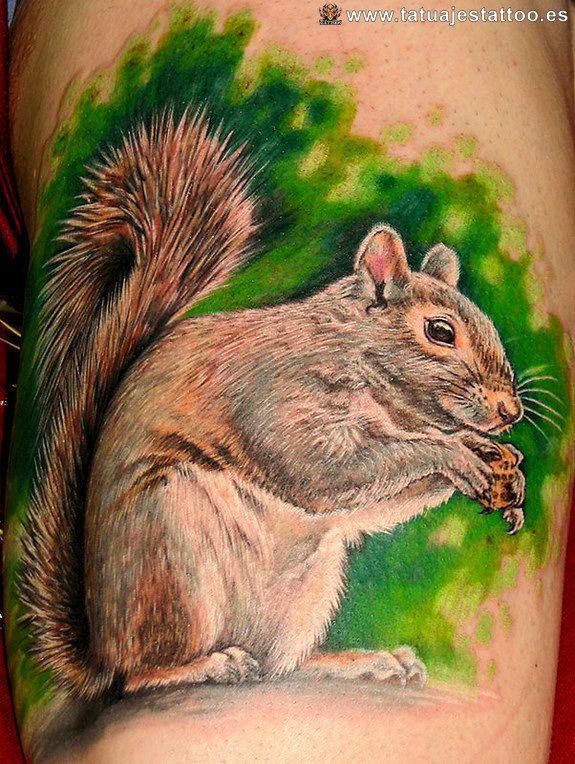 Tatuajes De Ardillas Tatuaje De Ardilla Ardillas Animales