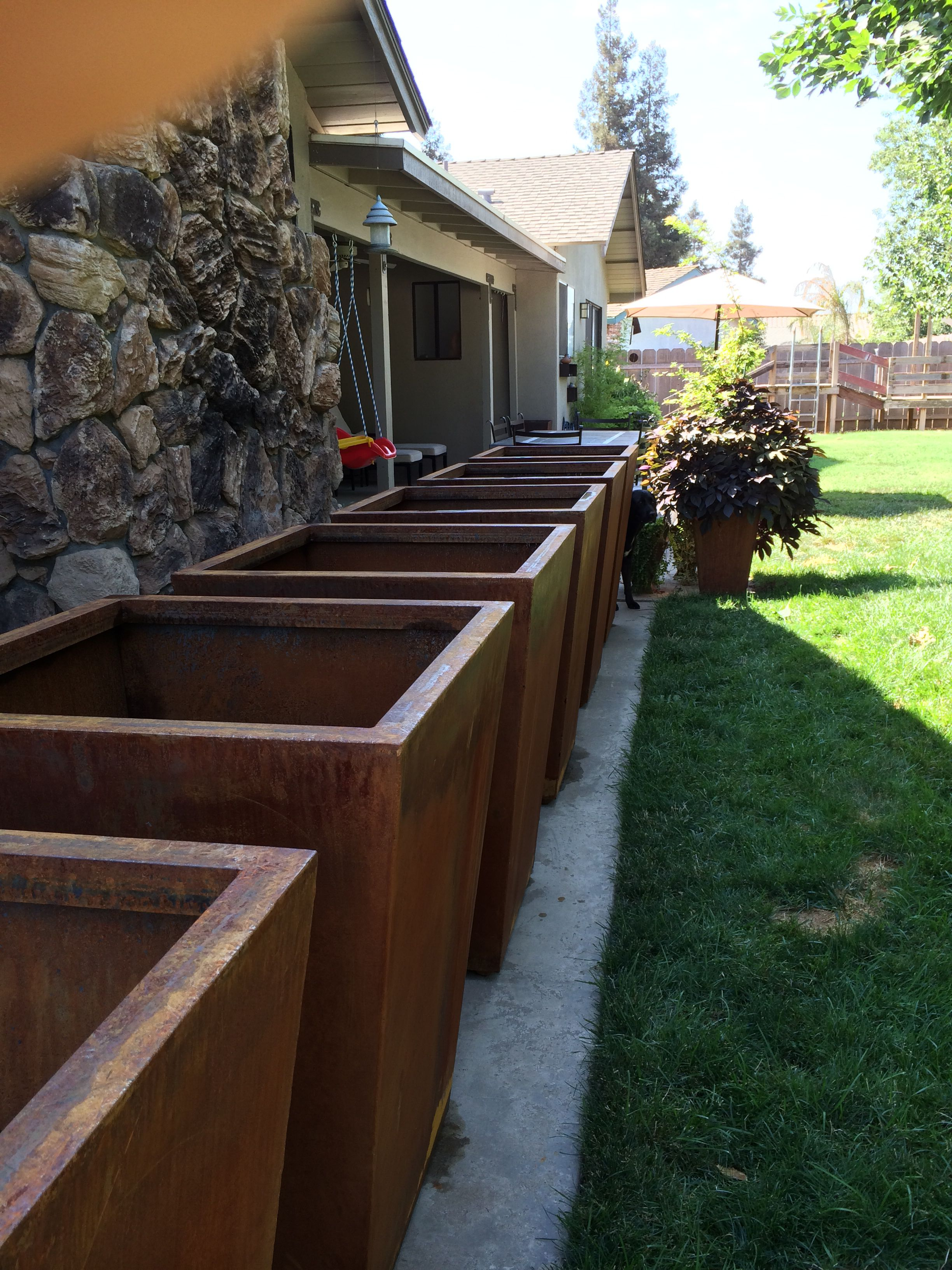 "The six 36"" tall corten steel planters all rusty and ready for the"