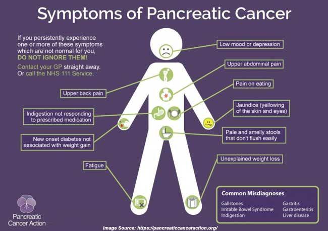 Pin On Pancreas