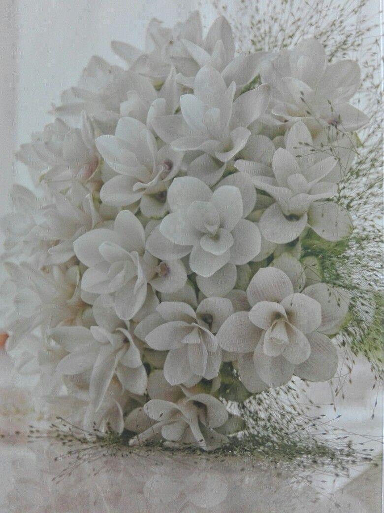 Curcuma Bouquet Sposa.Bouquet Con Fiori Di Curcuma Sooo Special Con Immagini